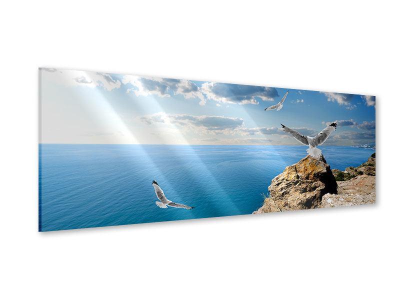 Acrylglasbild Panorama Die Möwen und das Meer
