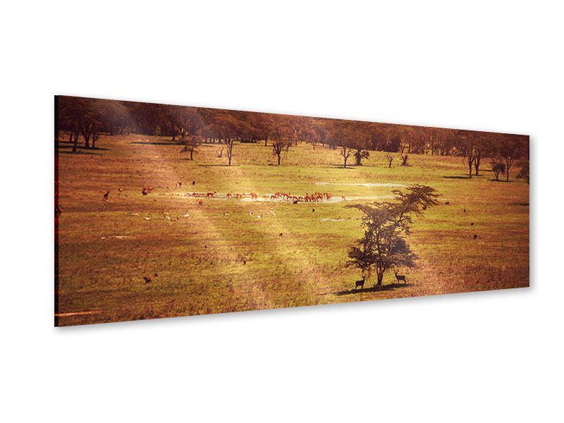 Acrylglasbild Panorama Malerisches Afrika