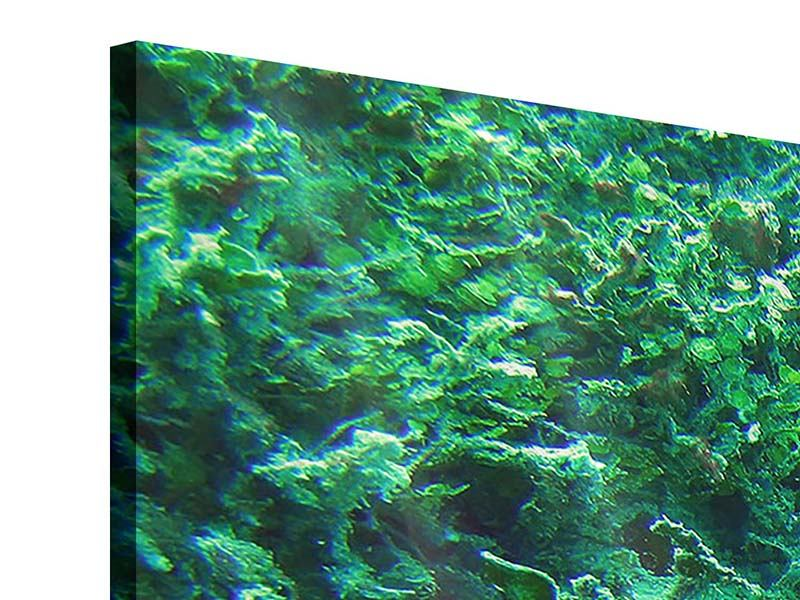 Acrylglasbild 3-teilig Korallen