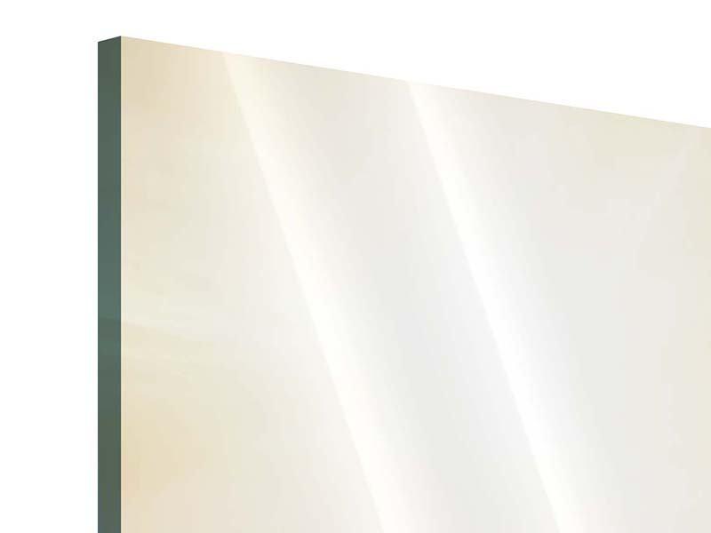 Acrylglasbild 3-teilig Sonnenuntergang beim Lavendelfeld