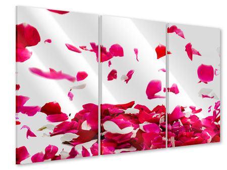 Acrylglasbild 3-teilig Für mich soll`s rote Rosen regnen