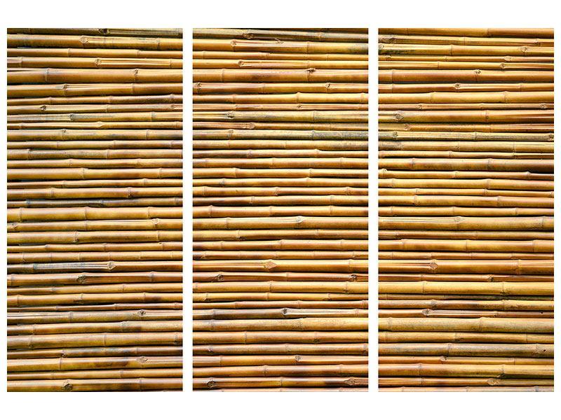 Acrylglasbild 3-teilig Bambus