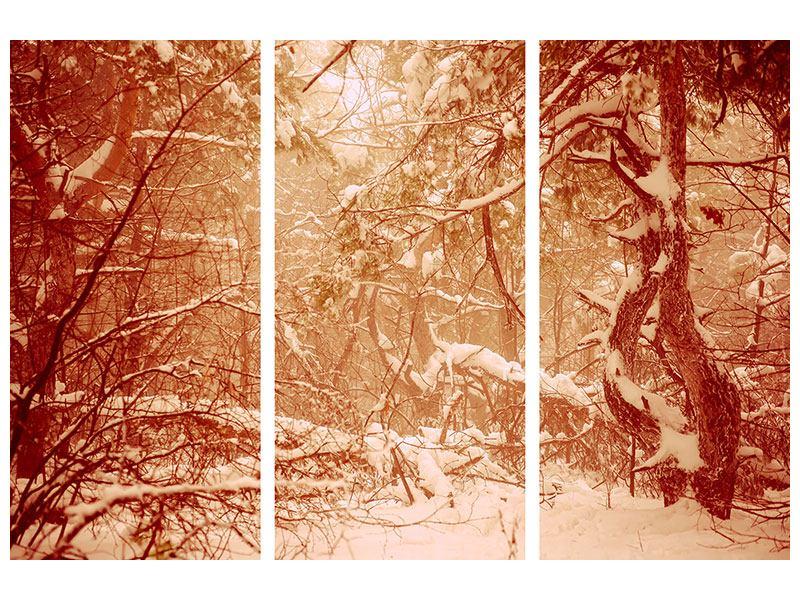 Acrylglasbild 3-teilig Schneewald