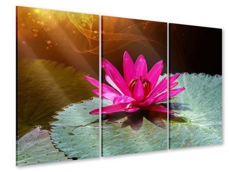 Acrylglasbild 3-teilig Der Frosch und das Seerosenblatt