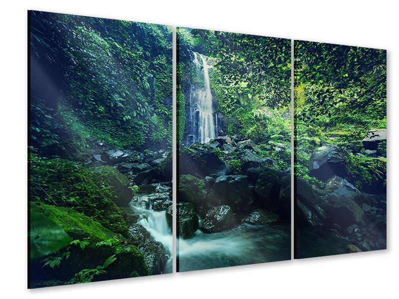 Acrylglasbild 3-teilig Natur