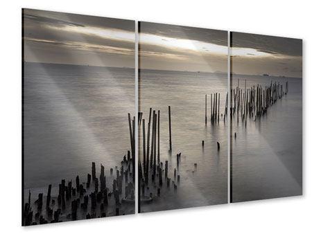 Acrylglasbild 3-teilig Das Meer und die Träne