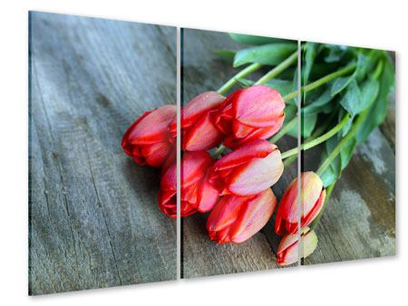 Acrylglasbild 3-teilig Der rote Tulpenstrauss