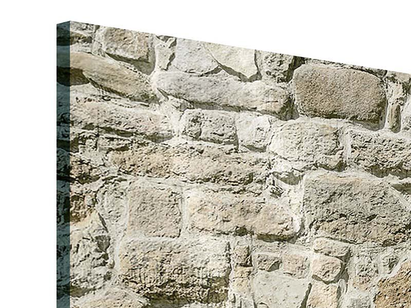 Acrylglasbild 3-teilig Naturmauer