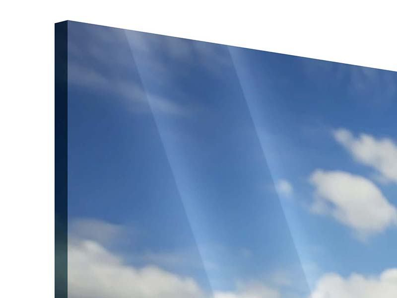 Acrylglasbild 3-teilig Sommer-Sonnenblumen