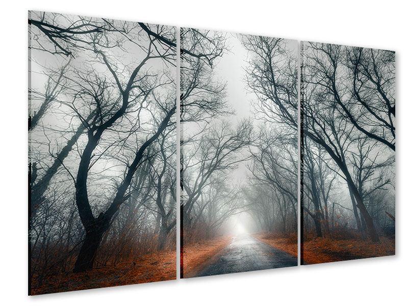 Acrylglasbild 3-teilig Mysteriöse Stimmung im Wald