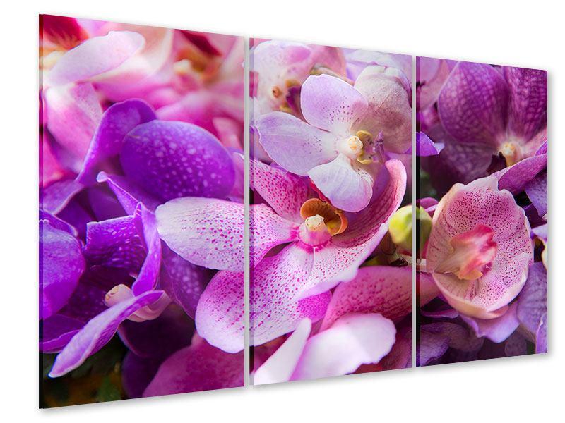 Acrylglasbild 3-teilig Im Orchideenparadies