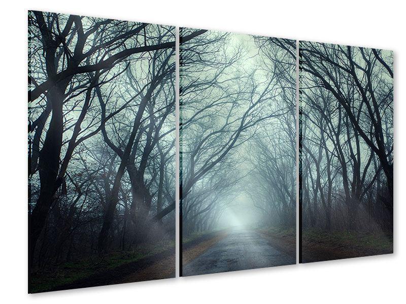 Acrylglasbild 3-teilig Nebelwald