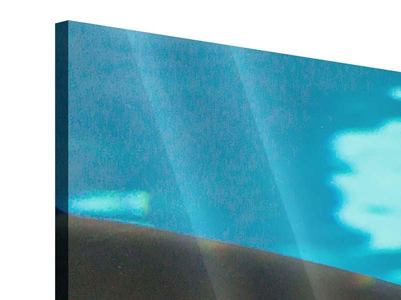 Acrylglasbild 3-teilig Der Haifisch