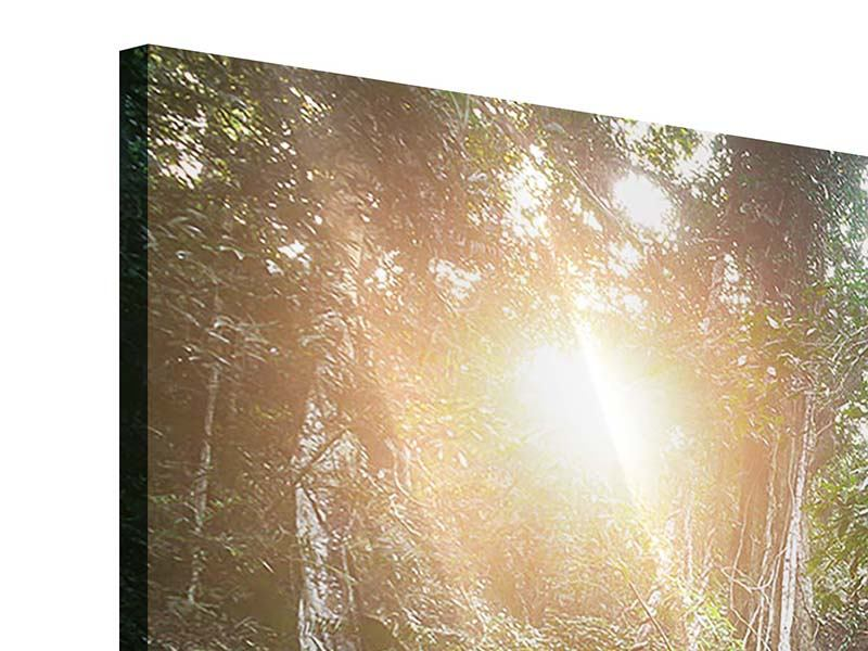 Acrylglasbild 3-teilig Naturschauspiel