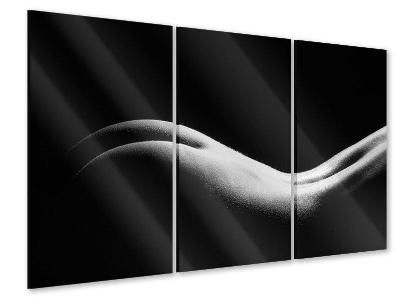 Acrylglasbild 3-teilig Nude