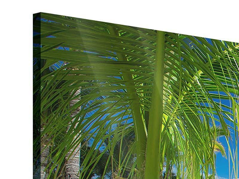 Acrylglasbild 3-teilig Club Paradies