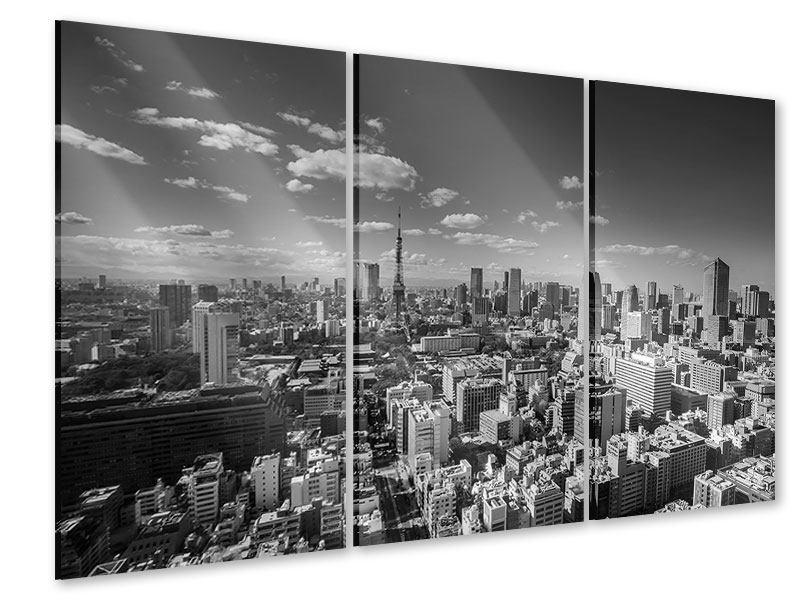 Acrylglasbild 3-teilig Tokio