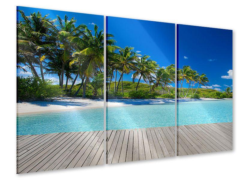 Acrylglasbild 3-teilig Standpalmen