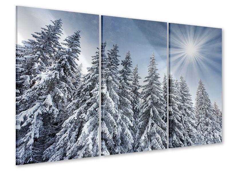 Acrylglasbild 3-teilig Wintertannen