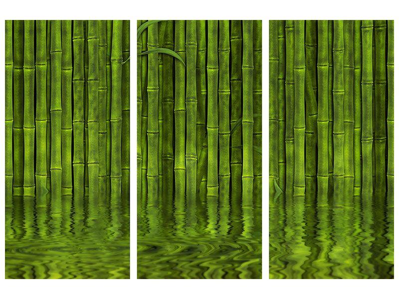 Acrylglasbild 3-teilig Wasserspiegelung Bambus