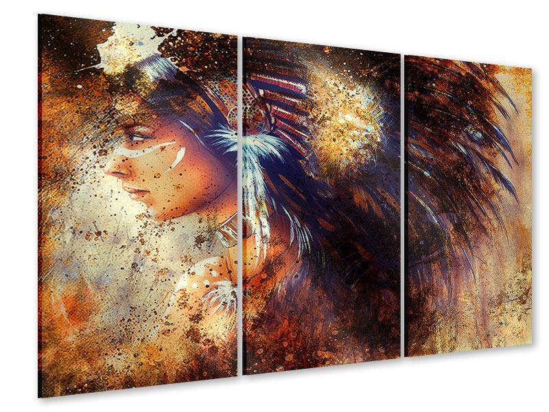Acrylglasbild 3-teilig Indianer