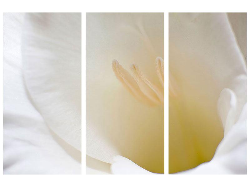 Acrylglasbild 3-teilig In einer Blüte