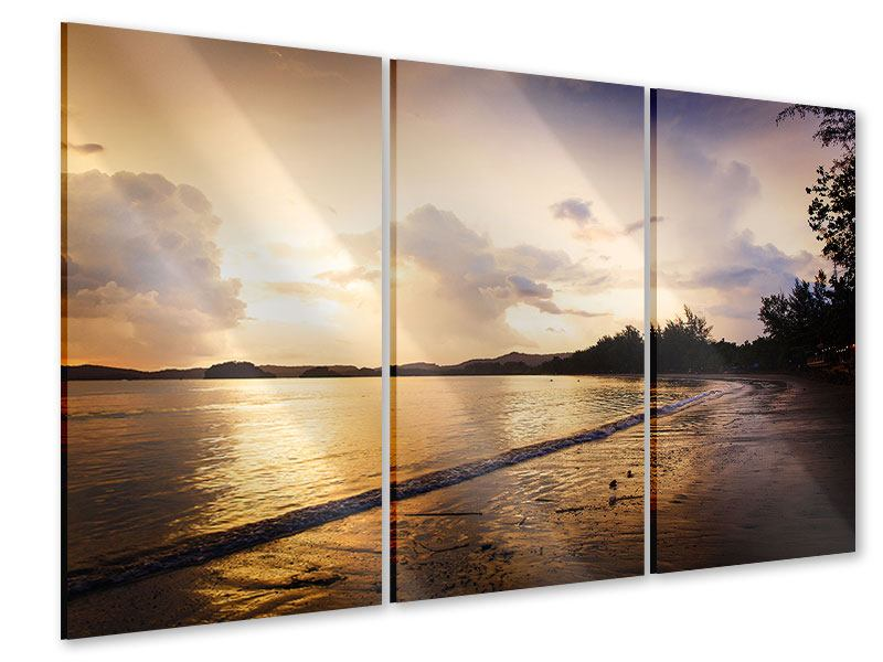 Acrylglasbild 3-teilig Das Ufer