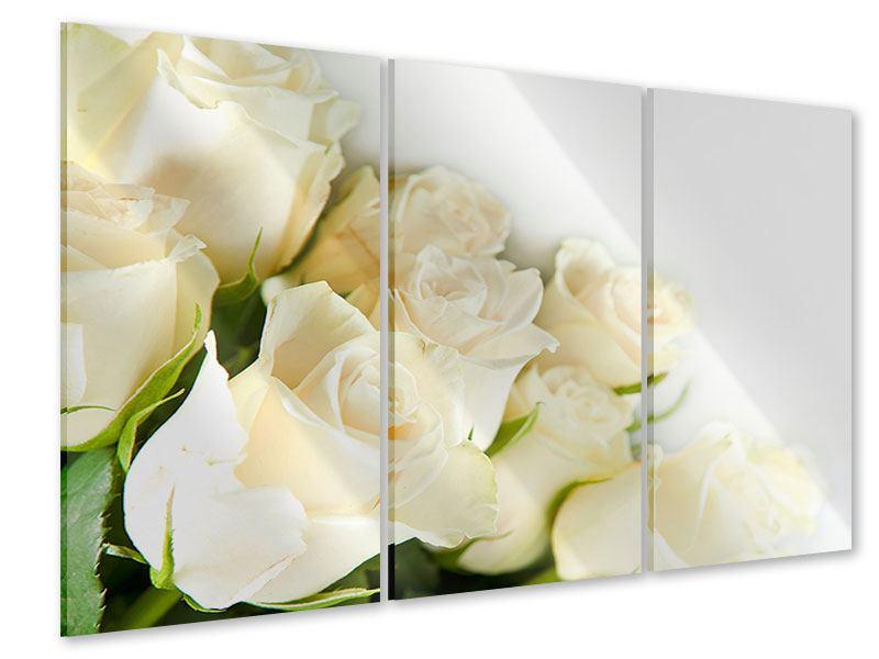 Acrylglasbild 3-teilig Weisse Rosen