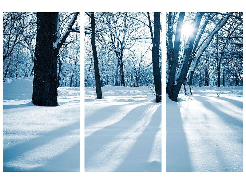 Acrylglasbild 3-teilig Der Wald ohne Spuren im Schnee