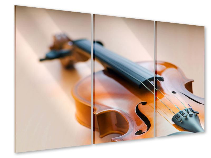 Acrylglasbild 3-teilig Geige