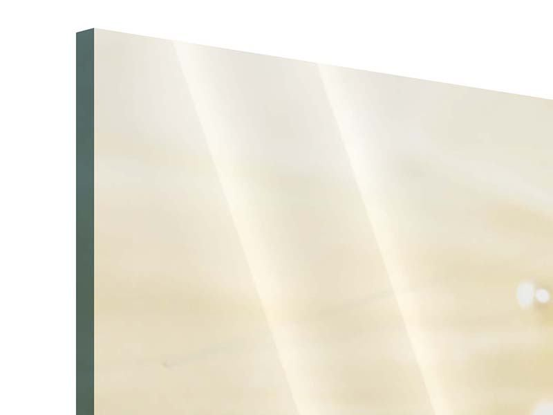 Acrylglasbild 3-teilig Trauringe