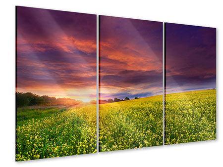 Acrylglasbild 3-teilig Abenddämmerung
