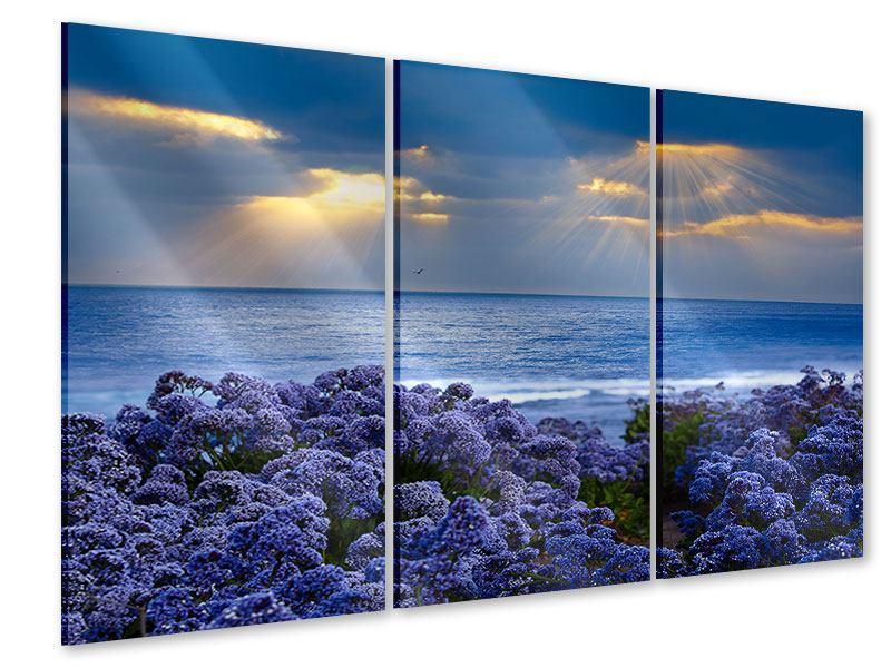 Acrylglasbild 3-teilig Der Lavendel und das Meer