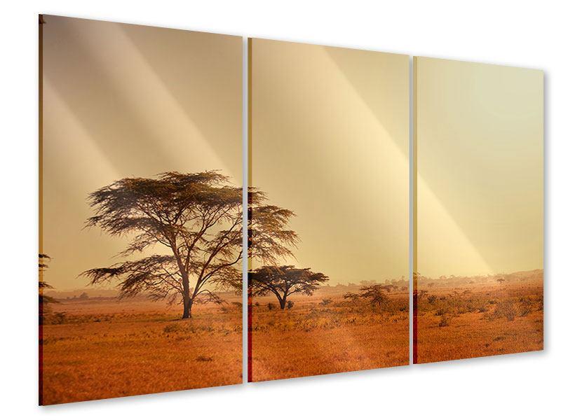 Acrylglasbild 3-teilig Weideland in Kenia