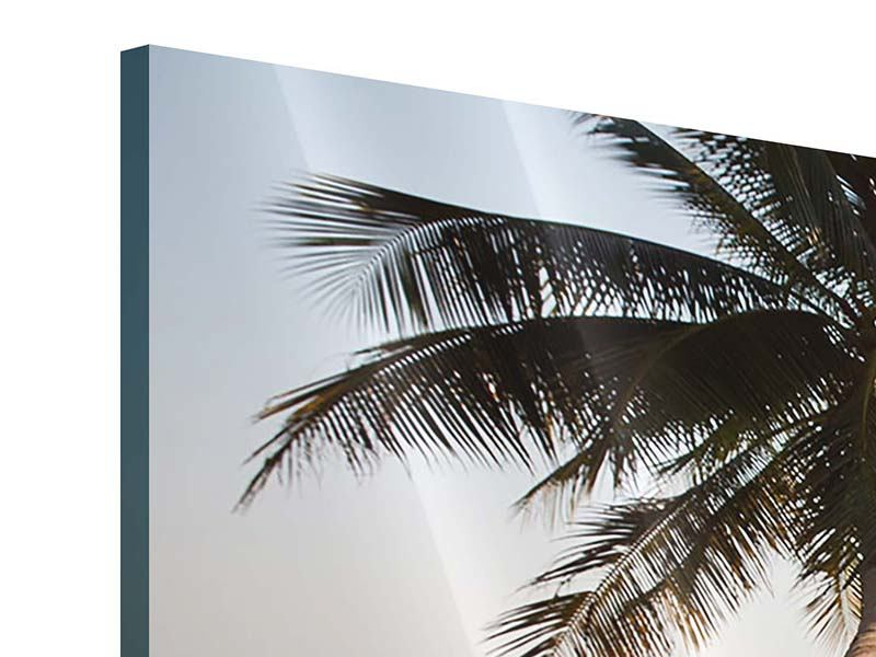 Acrylglasbild 3-teilig Palme