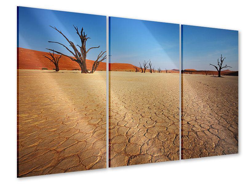 Acrylglasbild 3-teilig Wüste