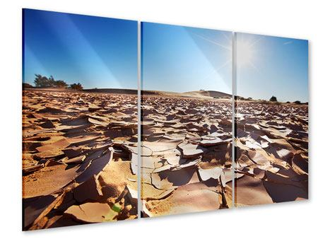 Acrylglasbild 3-teilig Dürre