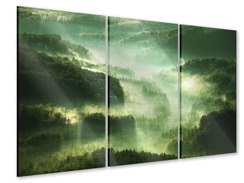 Acrylglasbild 3-teilig Über den Wäldern