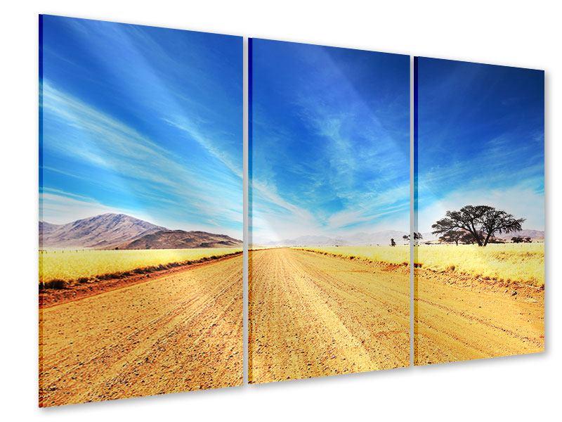 Acrylglasbild 3-teilig Eine Landschaft in Afrika