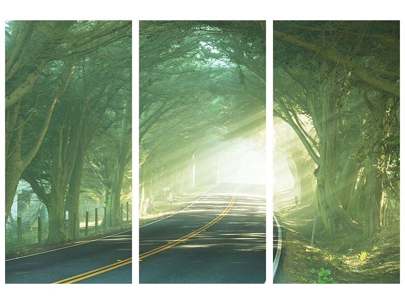 Acrylglasbild 3-teilig Die Allee