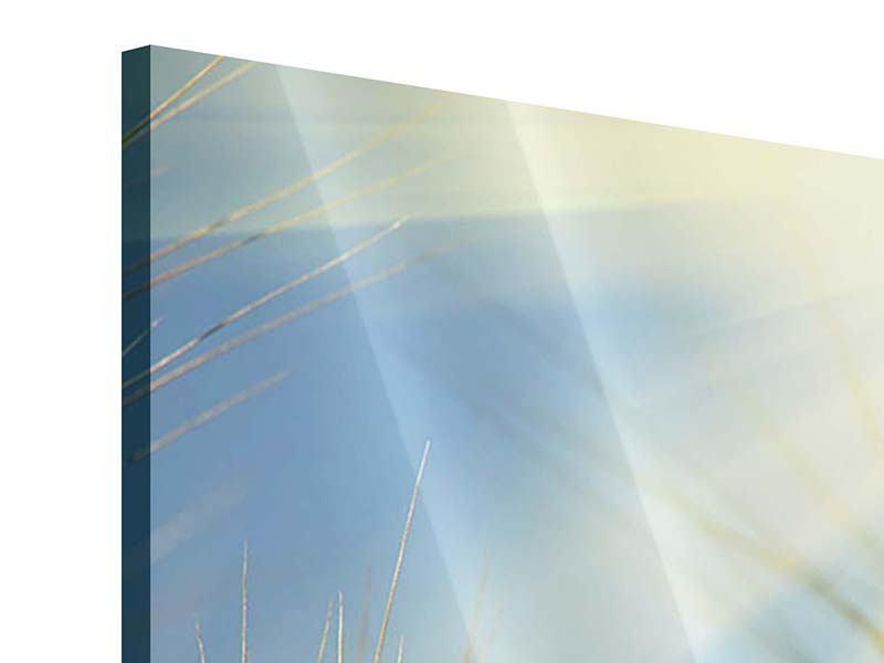 Acrylglasbild 3-teilig König des Getreides