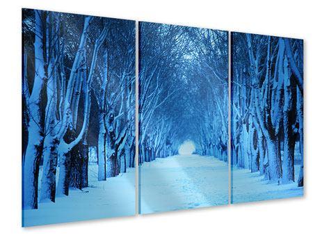 Acrylglasbild 3-teilig Winterbäume