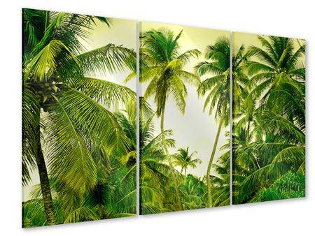 Acrylglasbild 3-teilig Reif für die Insel