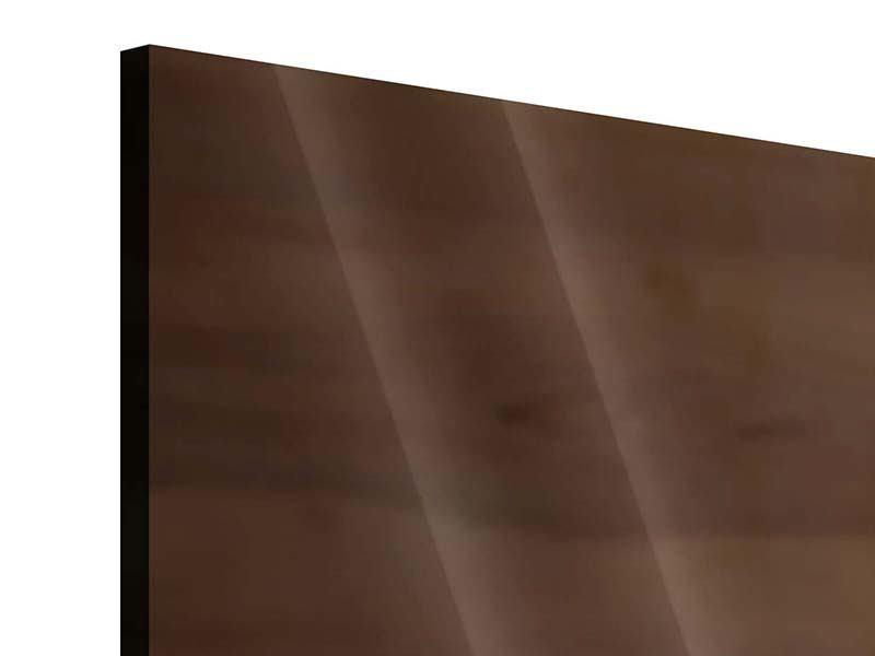 Acrylglasbild 3-teilig Speck