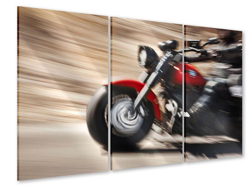 Acrylglasbild 3-teilig Biker