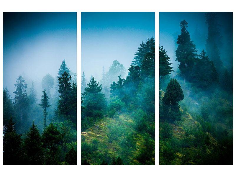 Acrylglasbild 3-teilig Geheimnisvoller Wald