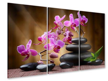 Acrylglasbild 3-teilig Wellness-Steine