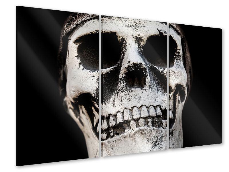 Acrylglasbild 3-teilig Skull