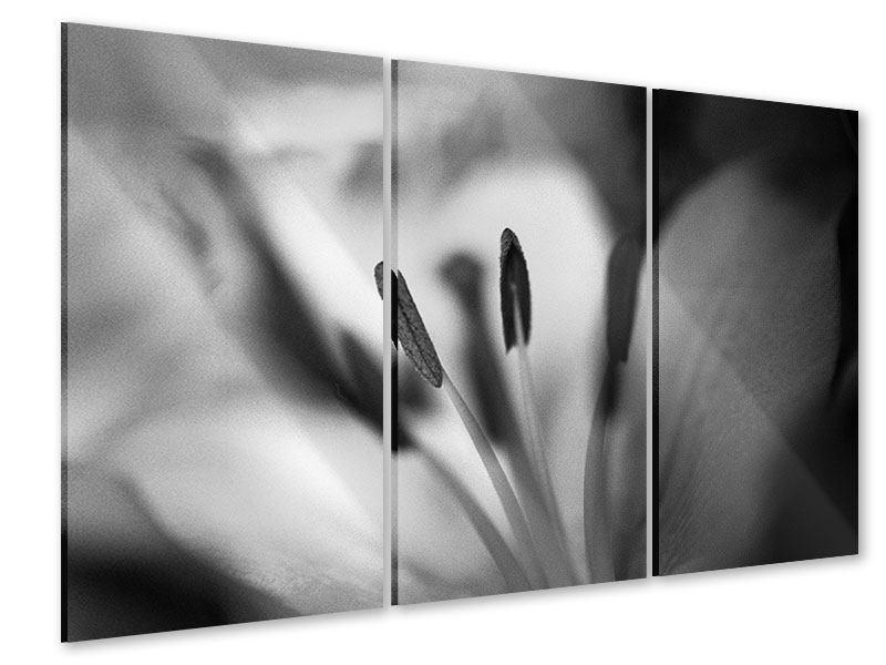 Acrylglasbild 3-teilig Makro Lilienblatt