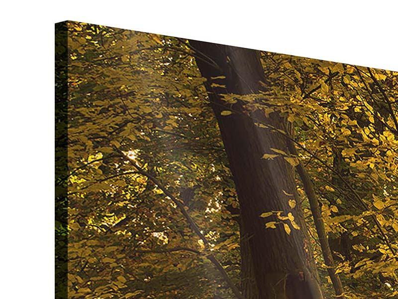 Acrylglasbild 3-teilig Herbstlaub